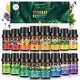 Ätherisches Öl, GLAMADOR Ätherische Öle Set, Essential Oil für Aromatherapie, 100% Rein Öle für Aroma Diffuser, Lavendel, Zitronengras, Teebaum, Minze, Süßorange, Eukalyptus, Geschenkset (16x5ml)