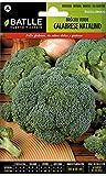 Batlle Gemüsesamen - Brokkoli Calabrese Grün (1500 Samen)