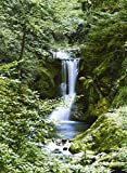 1art1 Wälder - Wasserfall im Frühling 4-teilig Fototapete Poster-Tapete 254 x 183 cm