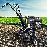 BRAST Benzin Ackerfräse 3,7kW (5PS) Arbeitsbreiten 36cm Radantrieb Motorhacke Gartenfräse Bodenfräse Kultivator