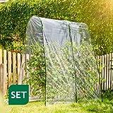 Tomatengewächshaus als Folientunnel-Set 2x2m / transparente Überdachung mit Bögen+Folie