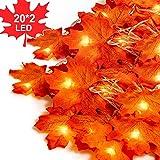 TOLIANCLE 2x20 Stück Herbstgirlande,Ahornblatt Lichterketten,herbstdekoration Garland für Erntedankfest Herbstdeko Hochzeit Dekoration Weihnachtsbeleuchtung