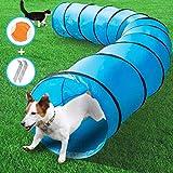 MASTERTOP Hundetunnel mit 1 Frisbee und Erdnägel, 525 x 60 cm Training Tunnel, Spieltunnel Agilitytunnel für Hunde und Katze mit Tragetasche (Blau)