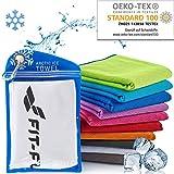 Fit-Flip Kühlendes Handtuch 100x30cm, Mikrofaser Sporthandtuch kühlend, Kühltuch, Cooling Towel, Mikrofaser Handtuch – Farbe: weiß, Größe: 100x30cm