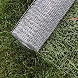 Wiltec Maschendraht Drahtgitter Volierendraht Stahl verzinkt 1mx25m 0,75mm Drahtstärke 16x16mm Maschenmaße